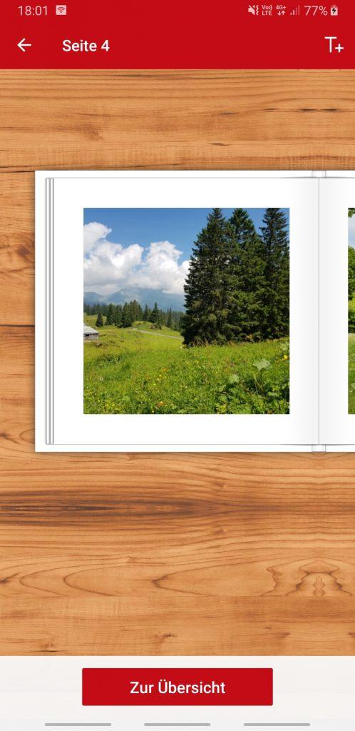 Foto von Bäumen auf weissem Hintergrund